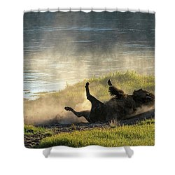 Rolling Shower Curtain
