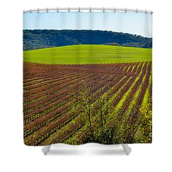 Rolling Hills And Vineyards Shower Curtain by CML Brown