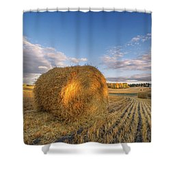 Rolling Hills Shower Curtain by Dan Jurak
