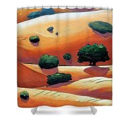 Rolling Trip Panel IIi Shower Curtain