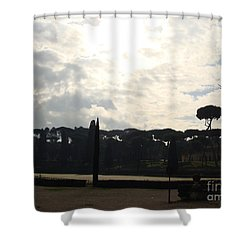 Roma, Villa Borghese Shower Curtain