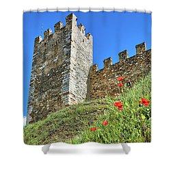 Shower Curtain featuring the photograph Roman Walls And Flowers In Tarragona by Eduardo Jose Accorinti