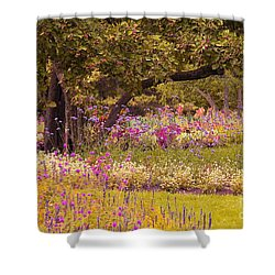 Shower Curtain featuring the photograph Romanesquerie by Aimelle