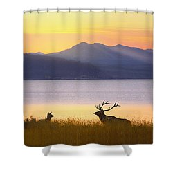 Shower Curtain featuring the photograph Romantic Morning by Kadek Susanto