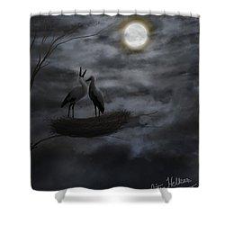 Night Sky Shower Curtain