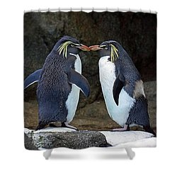 Romantic Rockhoppers Shower Curtain by Inge Riis McDonald