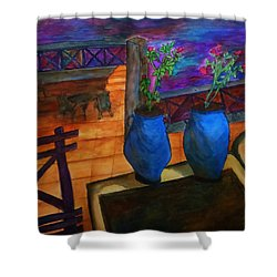 Rooftop View Shower Curtain by Christy Saunders Church