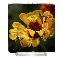 Shower Curtain featuring the digital art Room For More by Kim Henderson