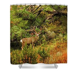 Roosevelt Deer Shower Curtain