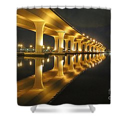 Roosevelt Reflection Shower Curtain