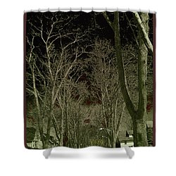 Roosevelt Avenue I Shower Curtain