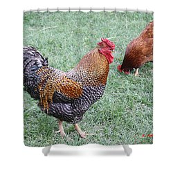 Rooster And Hen Shower Curtain