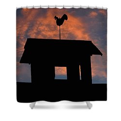 Rooster Weather Vane Silhouette Shower Curtain by Henry Kowalski