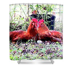 Shower Curtain featuring the mixed media Roosters by Charles Shoup