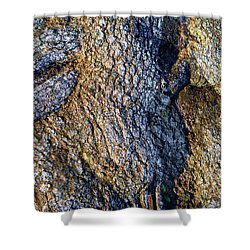 Shower Curtain featuring the photograph Root Waves by Glenn McCarthy Art and Photography