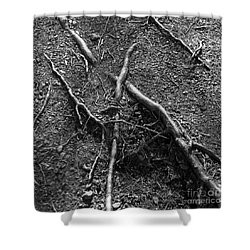 Roots Shower Curtain by A K Dayton