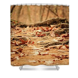 Roots Along The Path Shower Curtain
