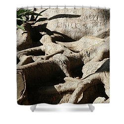 Roots And Graffiti Shower Curtain