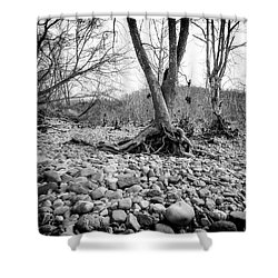 Shower Curtain featuring the photograph Roots And Stones by Alan Raasch
