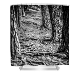 Rootway 2012 - Black Edition Shower Curtain