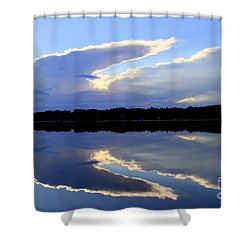 Rorschach Reflection Shower Curtain