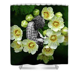 Shower Curtain featuring the photograph Rory Flower by Ben Upham