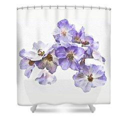 Rosa Canina - Watercolour Shower Curtain