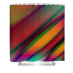 Rosa Y Oro Shower Curtain