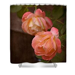 Rose 339 Shower Curtain