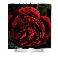 Rose 385 Shower Curtain