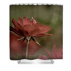 Rose 5 Shower Curtain