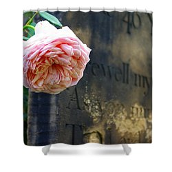 Rose At The Grave Shower Curtain