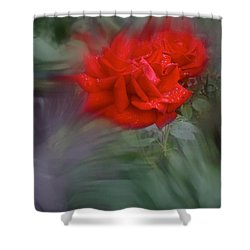 Rose Aug 2016 Shower Curtain by Richard Cummings