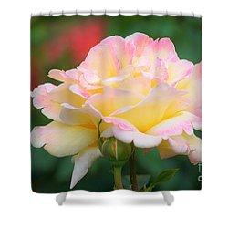 Rose Beauty Shower Curtain