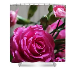 Rose Bloom Shower Curtain
