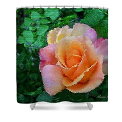 Shower Curtain featuring the photograph Rose by Bonnie Willis