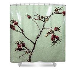 Rose Hips Shower Curtain