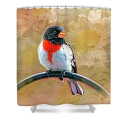 Rose-breasted-grosbeak Shower Curtain by Mary Timman