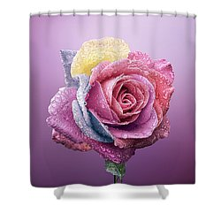 Rose Colorfull Shower Curtain