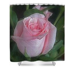 Rose Dreams Shower Curtain
