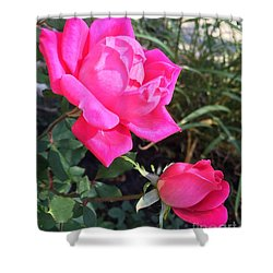 Rose Duet Shower Curtain