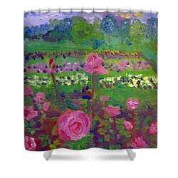 Rose Gardens In Minneapolis Shower Curtain