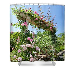 Rose Gate Shower Curtain by Aiolos Greek Collections