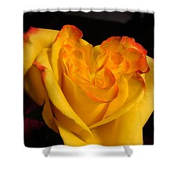 Shower Curtain featuring the photograph Rose Heart by Margaret Bobb