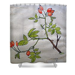 Rose Hip Shower Curtain by Thomas M Pikolin