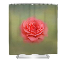 Shower Curtain featuring the photograph Rose Impressions by Kim Hojnacki