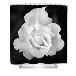 Rose In Black And White Shower Curtain