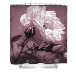 Rose In Rose Shower Curtain