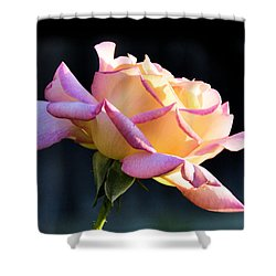 Rose In Sunshine Shower Curtain