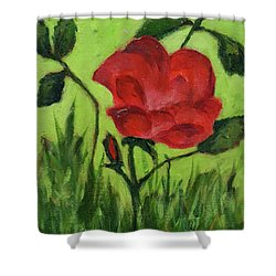 Rose Shower Curtain by Janet Garcia